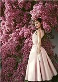 Audrey Hepburn Vogue, Postcard