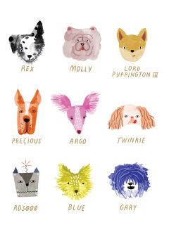 Dog Faces, Cards - Standard