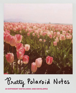 Pretty Polaroid Notes