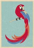 Parrot, Postcard