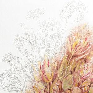 Still Life Bouquets, Colouring books