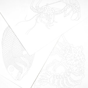Japanese Designs, Colouring books