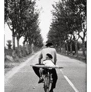 ERWITT France  Provence  195, Postcard