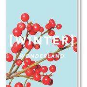 Revista Winter Wonderland Card