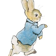 Peter Rabbit minicard