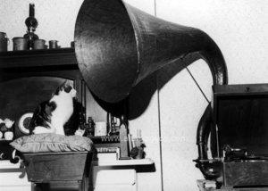 Cat listening to gramaphone, Dubbelvikt Kort