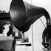 Cat listening to gramaphone, Greeting Card