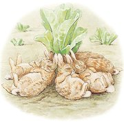 Beatrix Potter square bunnies sleeping, Greeting Card