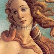 The Birth of Venus (Detail) (c. 1485), Greeting Card