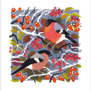 Bullfinches, Greeting Card