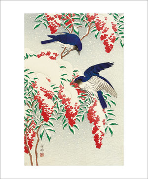 Flycatchers in snow, Greeting Card