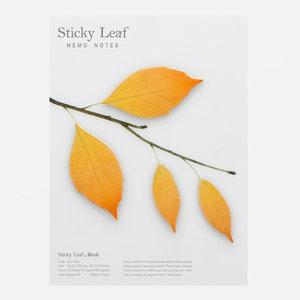 Sticky Leaf, Björk, Brun, Large