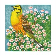 May Blossom, Greeting card
