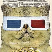 Fat Cat Movie Critic, Postcard