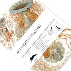 Art Forms in Nature, Gift & Creative Paper Book
