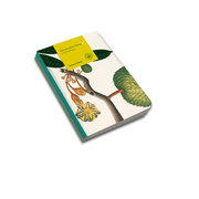 Remarkable Plants: Set of 3 A5 Notebooks