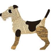 Terrier, Postcard