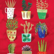 Nine Plant Pots, Cards-Xmas singles