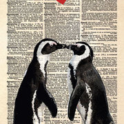 The Penguin Lovers, Postcard