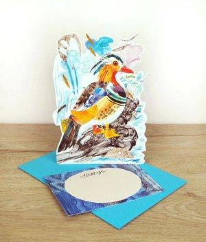 Mandarin Duck, 3D notecard