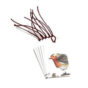 Robin in the Woods,  Set of 5 Gift Tags