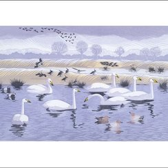 Seven Swans, Greeting Card