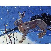 NC A.Haslen/Winter Hare II
