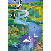 Swans on the River, Greeting Card
