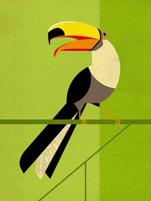Toucan, Greeting Card