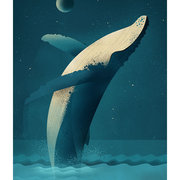Humpback Whale, Greeting Card