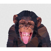 Chimp, Greeting Card