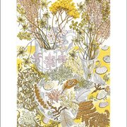 Nature Study Late Afternoon, Greeting Card