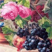 Still-life with Dark Grapes (Detail) (1838), Greeting Card