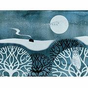 NC S.Elford/Owl in Winter