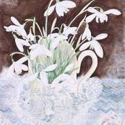 Snowdrop Cup, Winter Cards