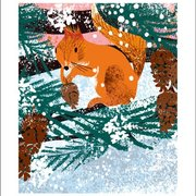 Winter Squirrel, Winter Cards