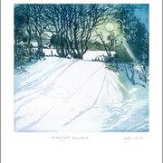 NC S.Winter/Moonlight Shadows