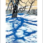 NC T.Haberkorn/Winter Shadow