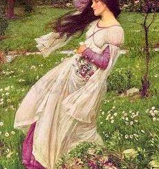 Windflowers, Postcard