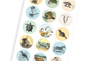 Natural History, Labels Sticker & Tapes