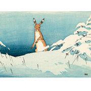 NC A.W.Seaby/Snow & Hare