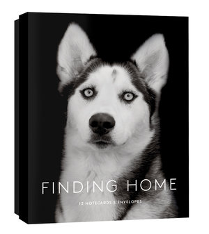 Finding Home: 12 Notecards & Envelopes