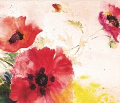 Watercolor Poppies, Notecard Box, 14 cards