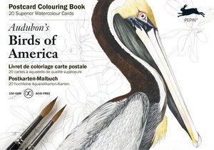 Audobon's Birds, Postcard Colouring Book