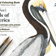 Audobon's Birds, Postcard Colouring Book