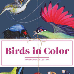 Birds in Color 3 Notebooks