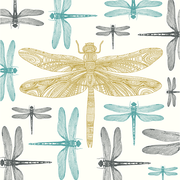Dragonfly, Eden Project, Greeting Card
