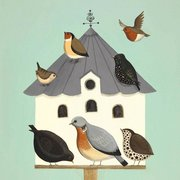 Dawdling On The Dovecote, Greeting Card