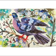 Wood Pigeon, Greeting Card