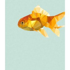 Goldfish, Print A3